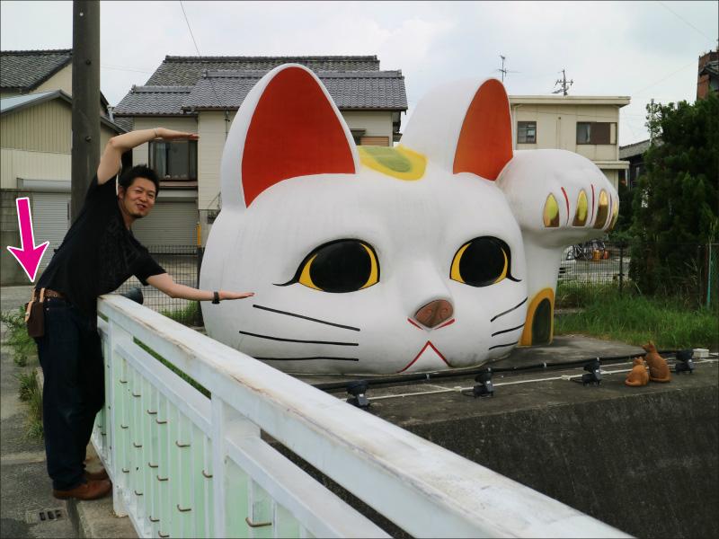 1-bigcat